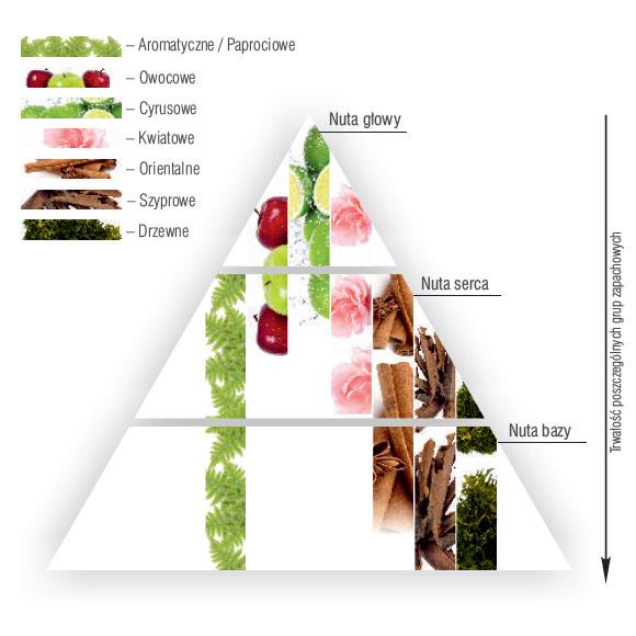 kalejdoskop zapachów - nuty zapachowe